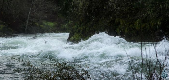 roaringriver